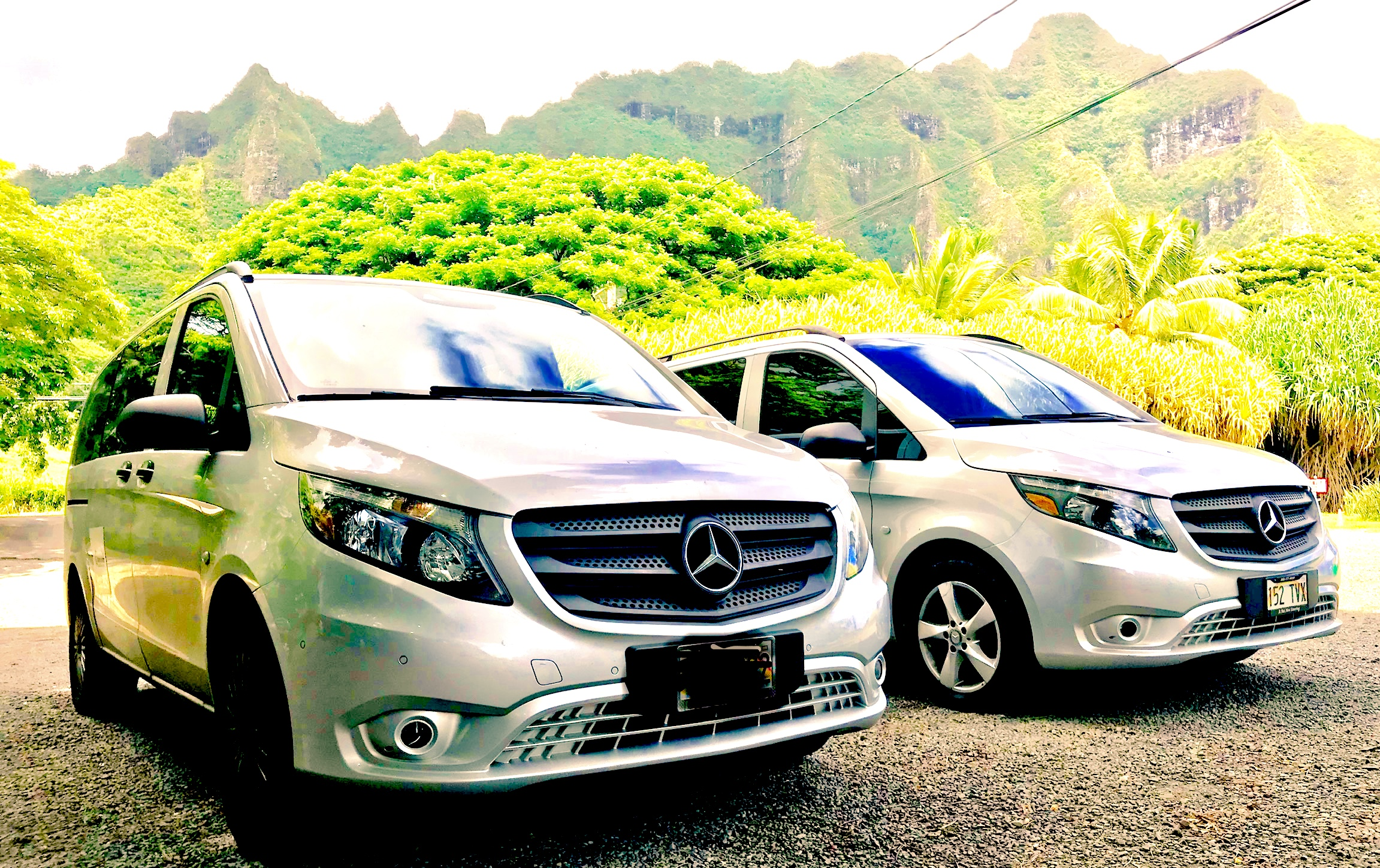 DanielsHawaii Tour Vehicles