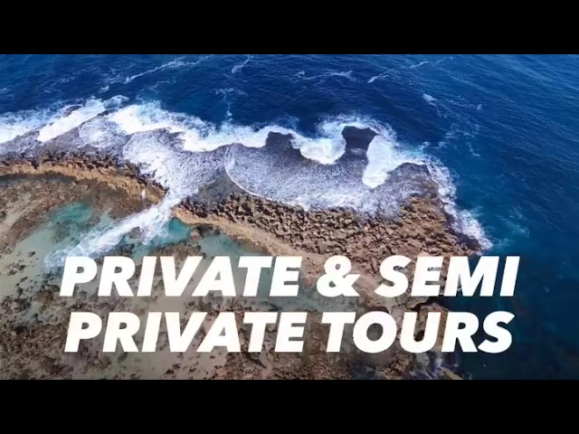 Tours Hawaii - Private Tours and Semi Private Tours
